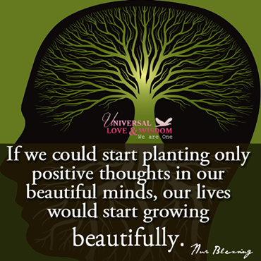 plant-positive-thoughts-in-our-minds