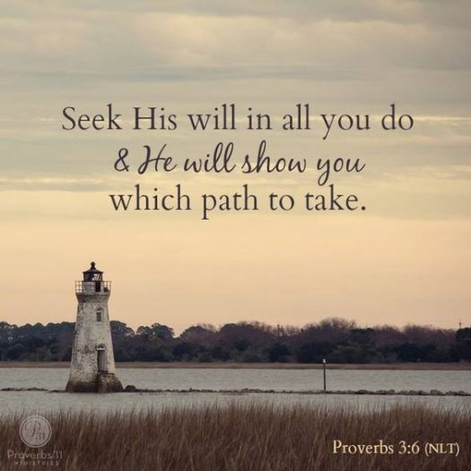 seek-his-will